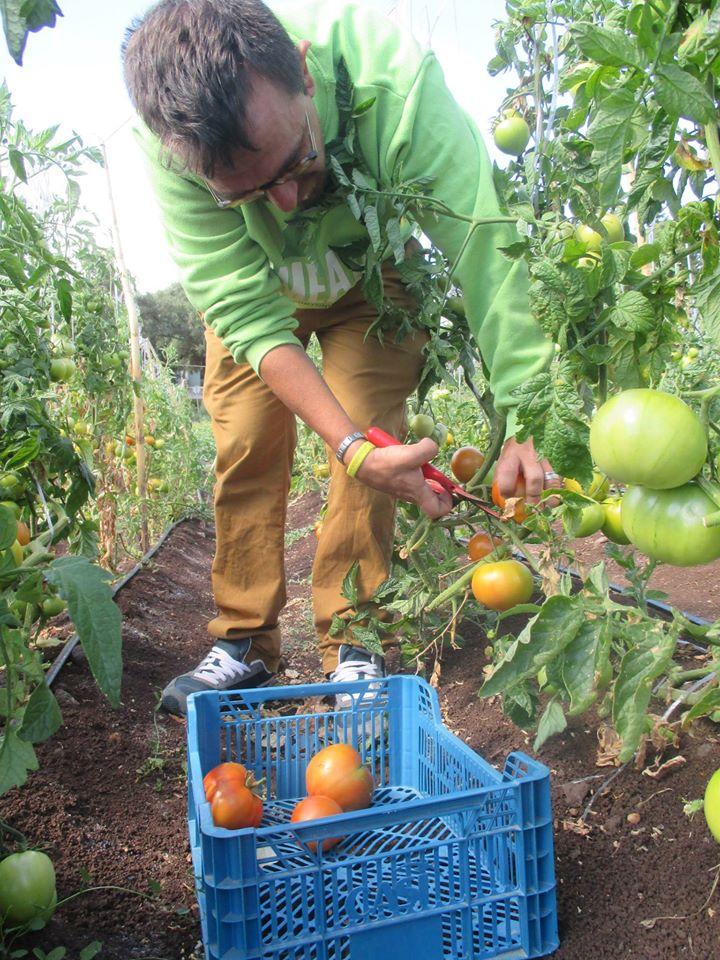 Inclusive Agriculture