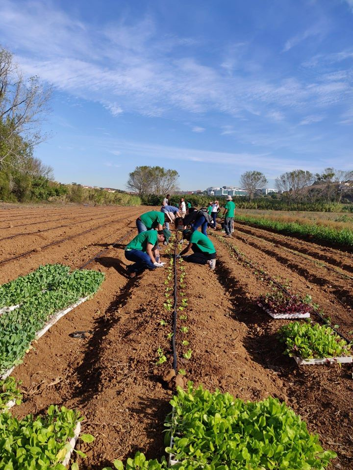 Inclusive Agriculture
