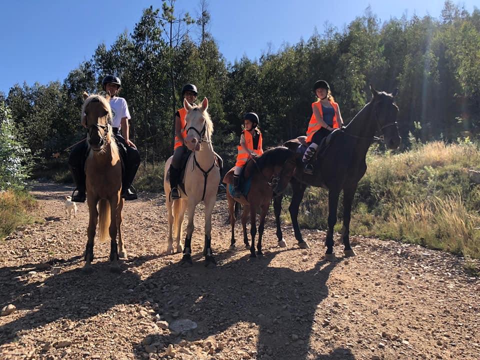 Horse Patrols and Environmental Protection